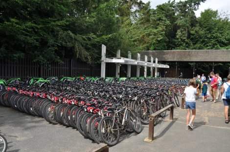 Bikes available to hire at Center Parcs Elveden Forest