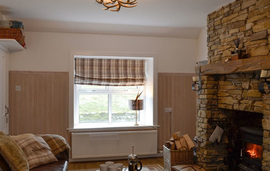 Carrick Cottage in Carrick Shore has a living room with a wood burning stove
