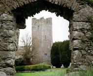 Clomantagh Castle in County Kilkenny