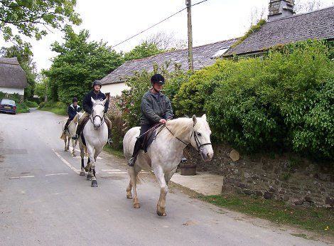 Try horse riding nat Gooseham Barton Farm Cottages