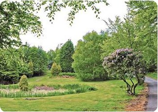 The grounds at Rothley Lodge