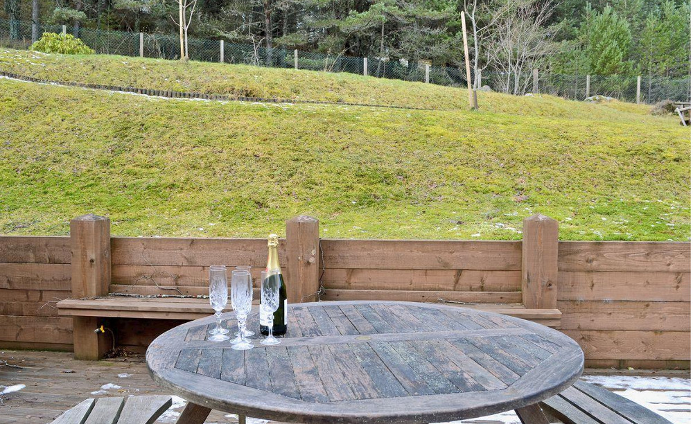 The garden and views at Wildwood in the Cairngorms National Park