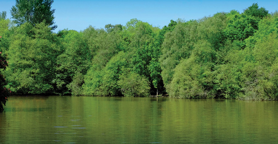 Brokerswood Holiday Park has a 5 acre lake for canoeing and kayaking